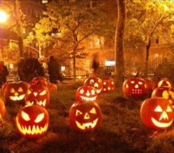sequestro, furto zucche di Halloween