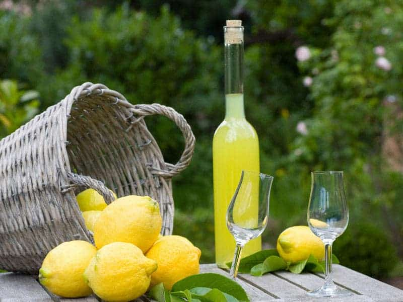 Photo of Limoncello di Sorrento passa agli spagnoli: Zamora acquista azioni Villa Massa
