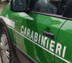 abusi-edilizi-camerota-ordine-demolizione-case